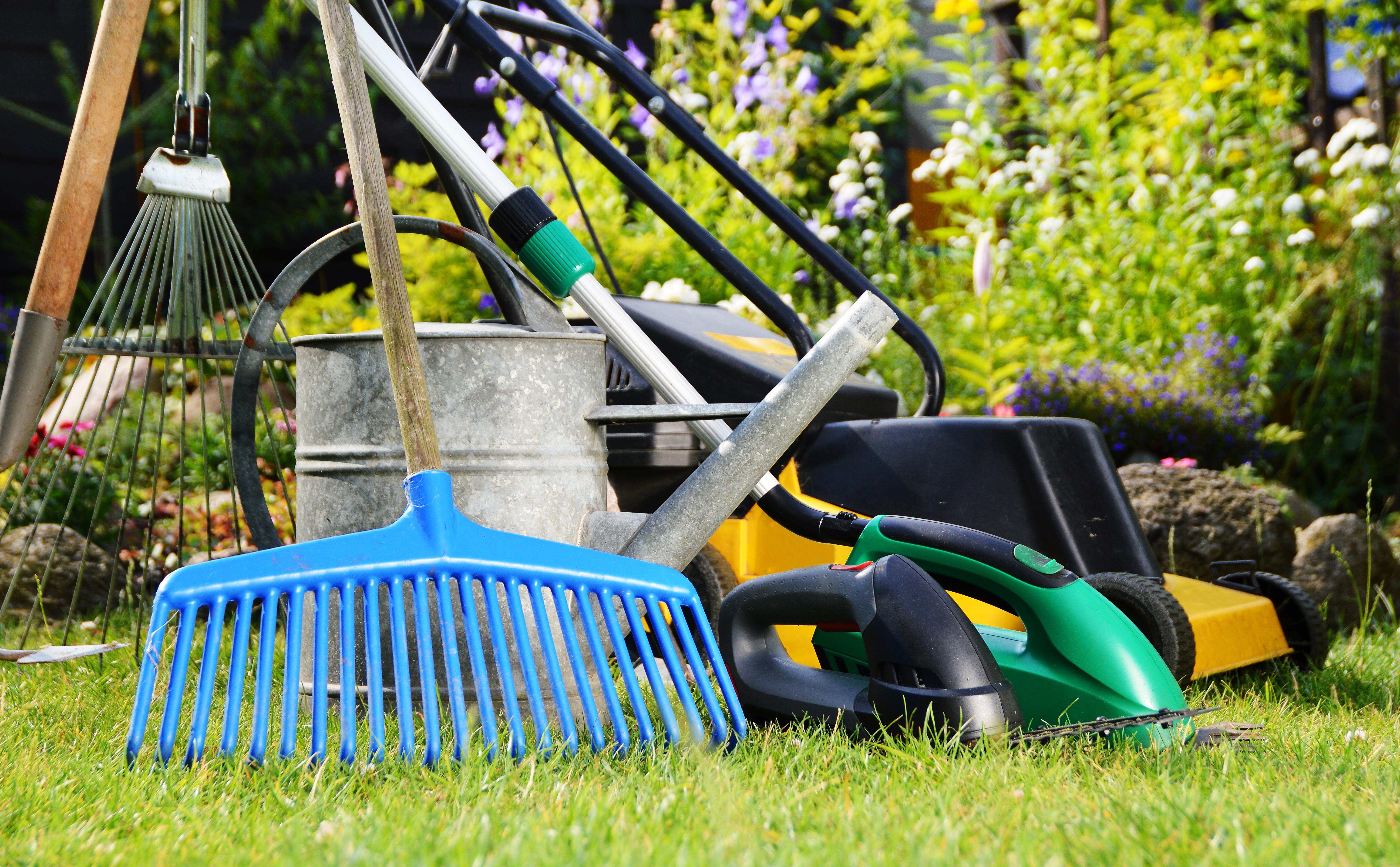 Jakie narzędzia ogrodnicze?